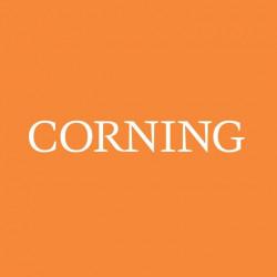 Placa de Petri Corning 35x10mm pt/20