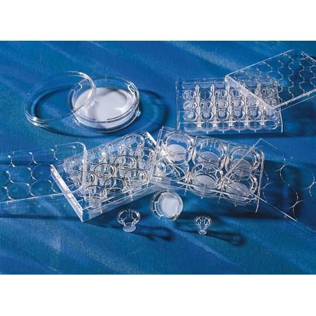 Transwell Membrana de 6,5mm com inserção de membrana de poliéster de poro 8.0um- p/placa 24 poços - Embalagem c/48 - Corning