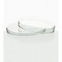 Placa de Petri LG em vidro 100 x 20mm