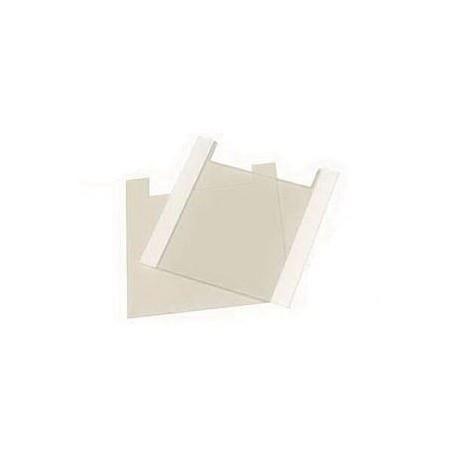 Placa de vidro para sistema de eletroforese Enduro E2110-PG-2