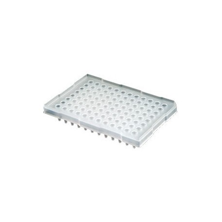 Microplaca Axygen PCR-96-LP-AB-C Meia Borda L.P. pct/5